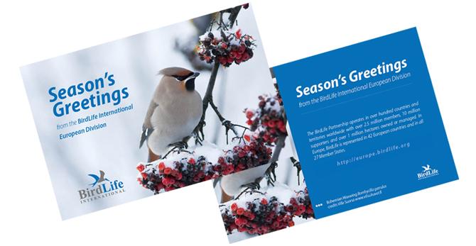 Tilhikuva BirdLife Euroopan joulukortissa