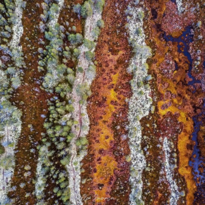 Suon pintakuvioita Peurakaaroilla Lumijoella