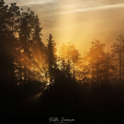 Auringonnousu Kuhmossa