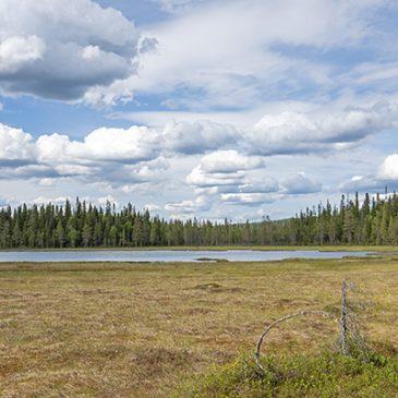 Rytivaaran kierroksella Syötteen kansallispuistossa